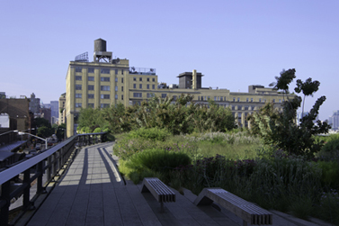 High Line at Gansvoort today